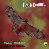 Hawk Dreams